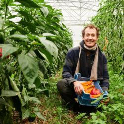 agriculteur avec des poivrons bio