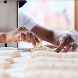 préparation de baguettes bio