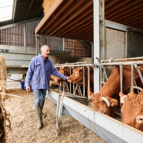 Agriculteur dans sa ferme